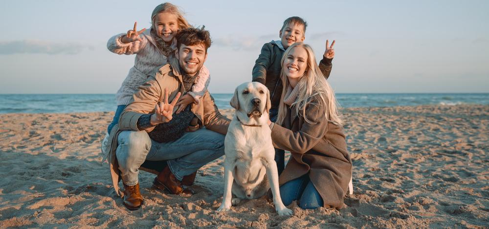 Sylt urlaub mit hund hundefreundliche h user auf sylt for Ferien auf juist mit hund